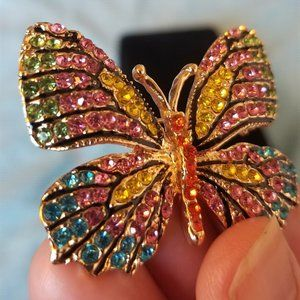Butterfly Brooch / Pin Blue Pink Red Green